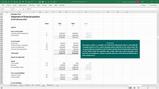 financial statements -  trust template